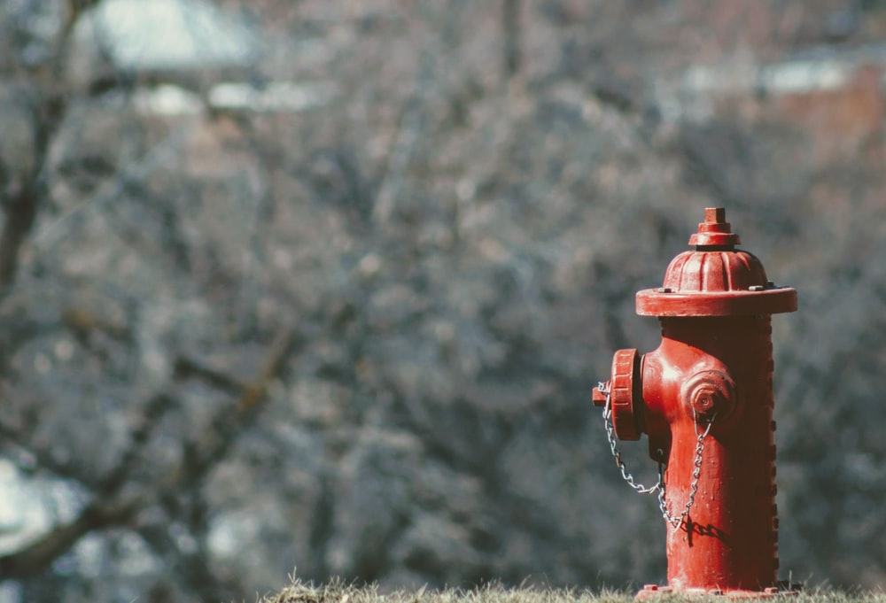 selective focus photography of red fire hydrant photo taken during daytime