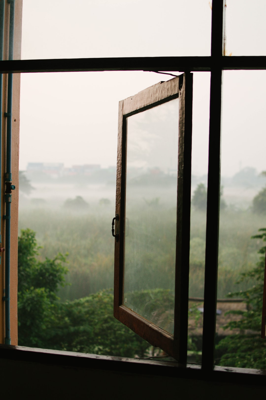 Despite being in Bangkok, outside my apartment window was a small field. The morning fog covered it beautifully each day.