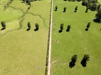 aerial photo of grass field