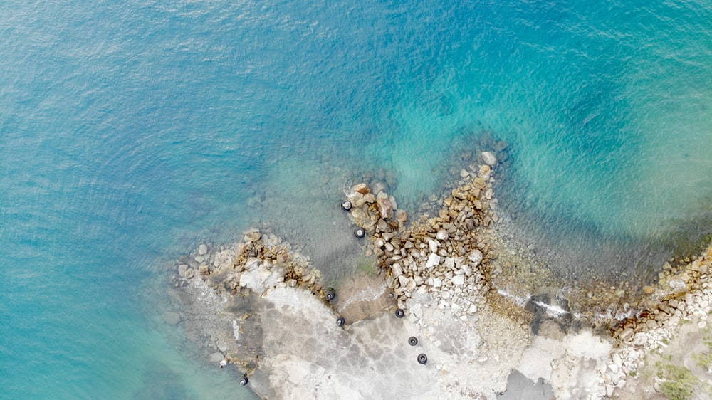 aerial photography of seashore at daytime