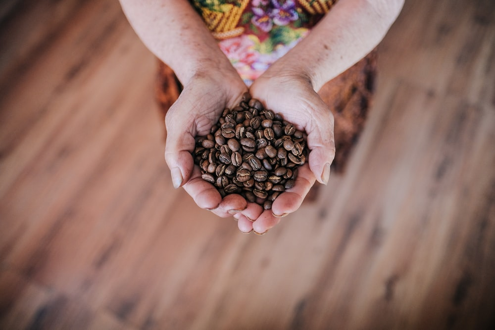 selective focus photography of person holding coffee beans
