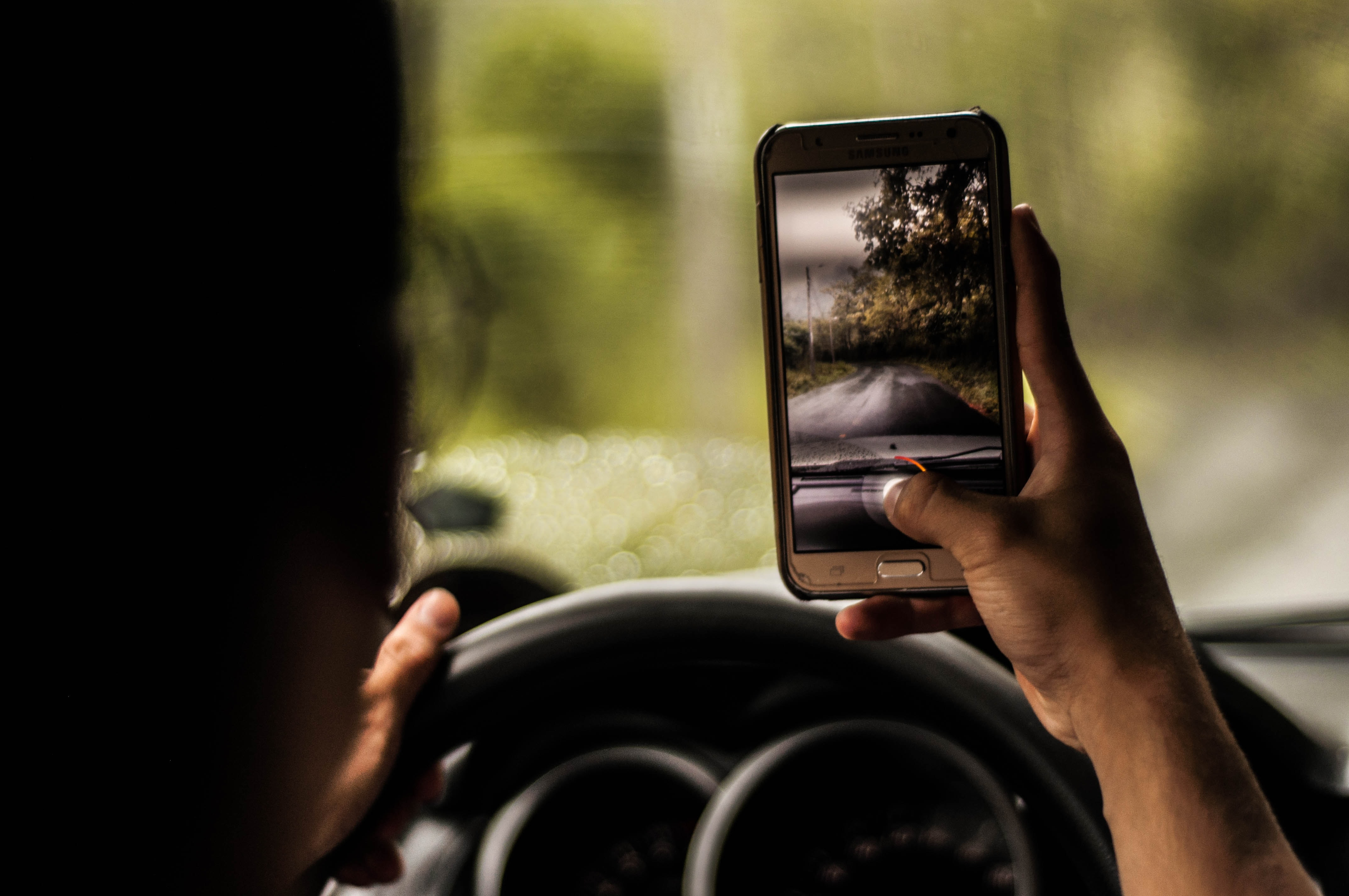 person taking a photo of trees