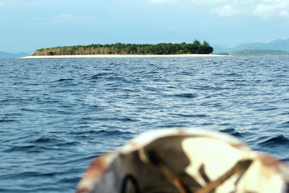 islet with trees near sea