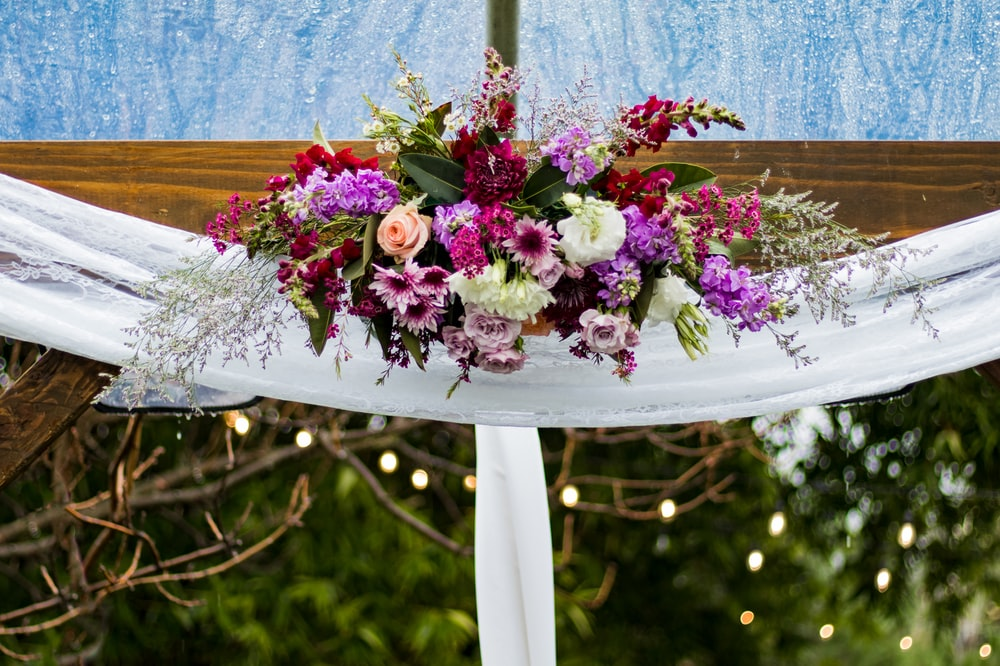white, pink, and red petaled flowers decor