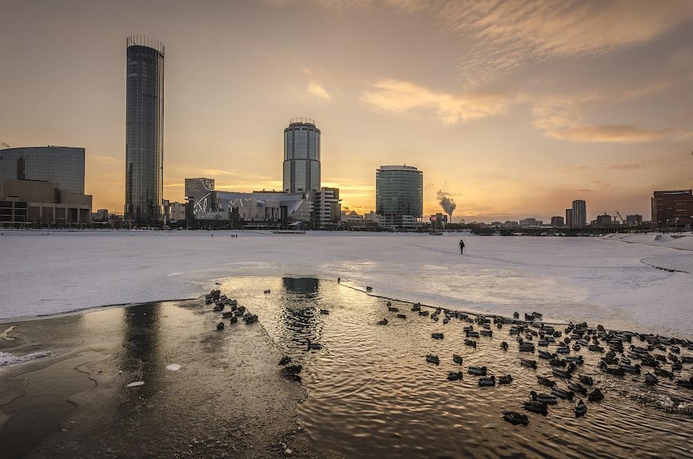 frozen lake beside city