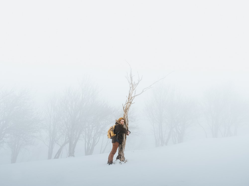 person hugging bare tree while snow