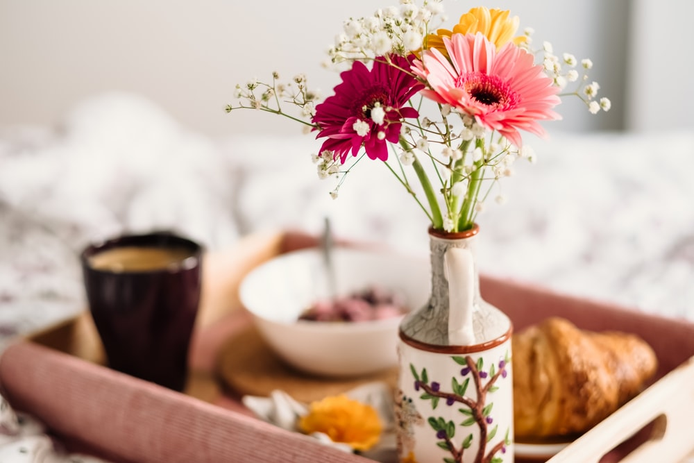 selective focus photography of pink petaled daisy flower in vase