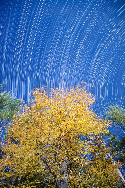 timelapse photography of sky