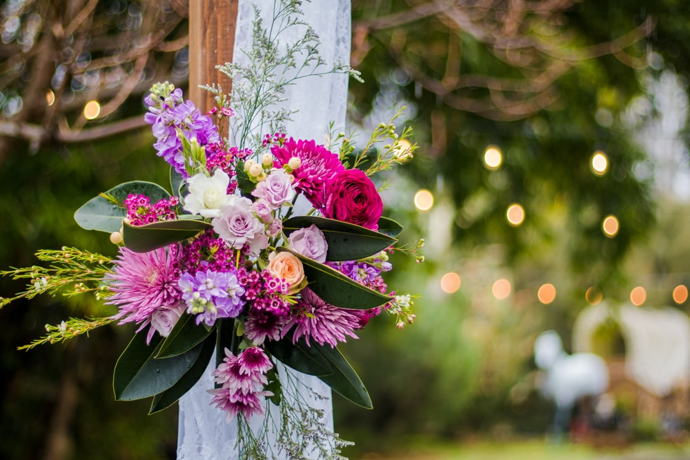 100 wedding flower pictures download free images on unsplash shallow focus photo of pink and purple flowers mightylinksfo