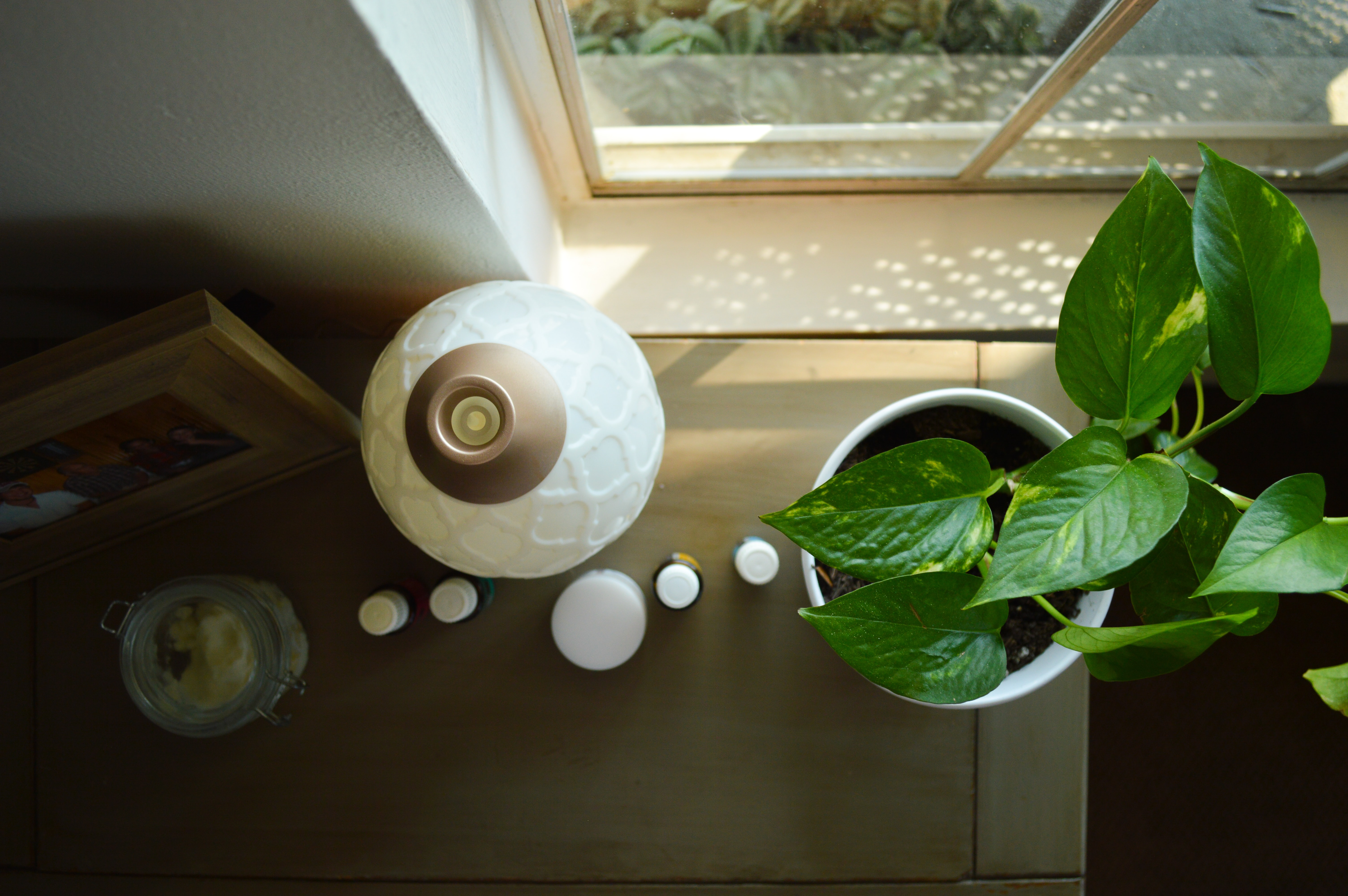 green leafed plant on table near lamp
