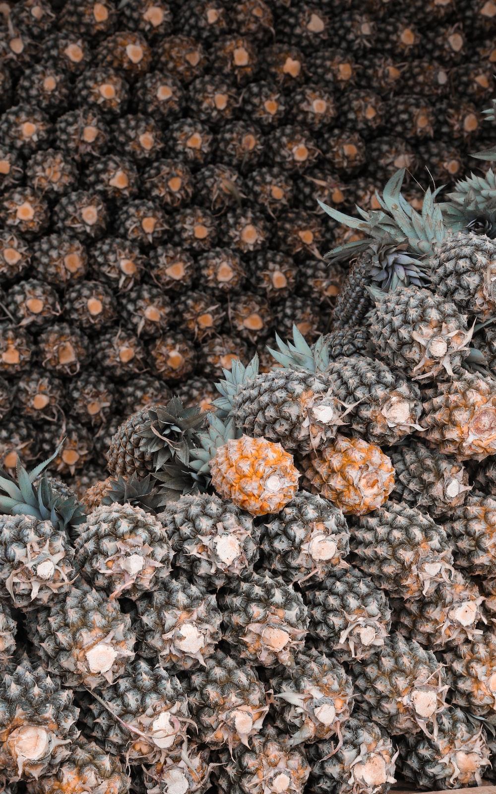pineapple lot