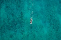 aerial photography of person bodyboarding on green body of water at daytime