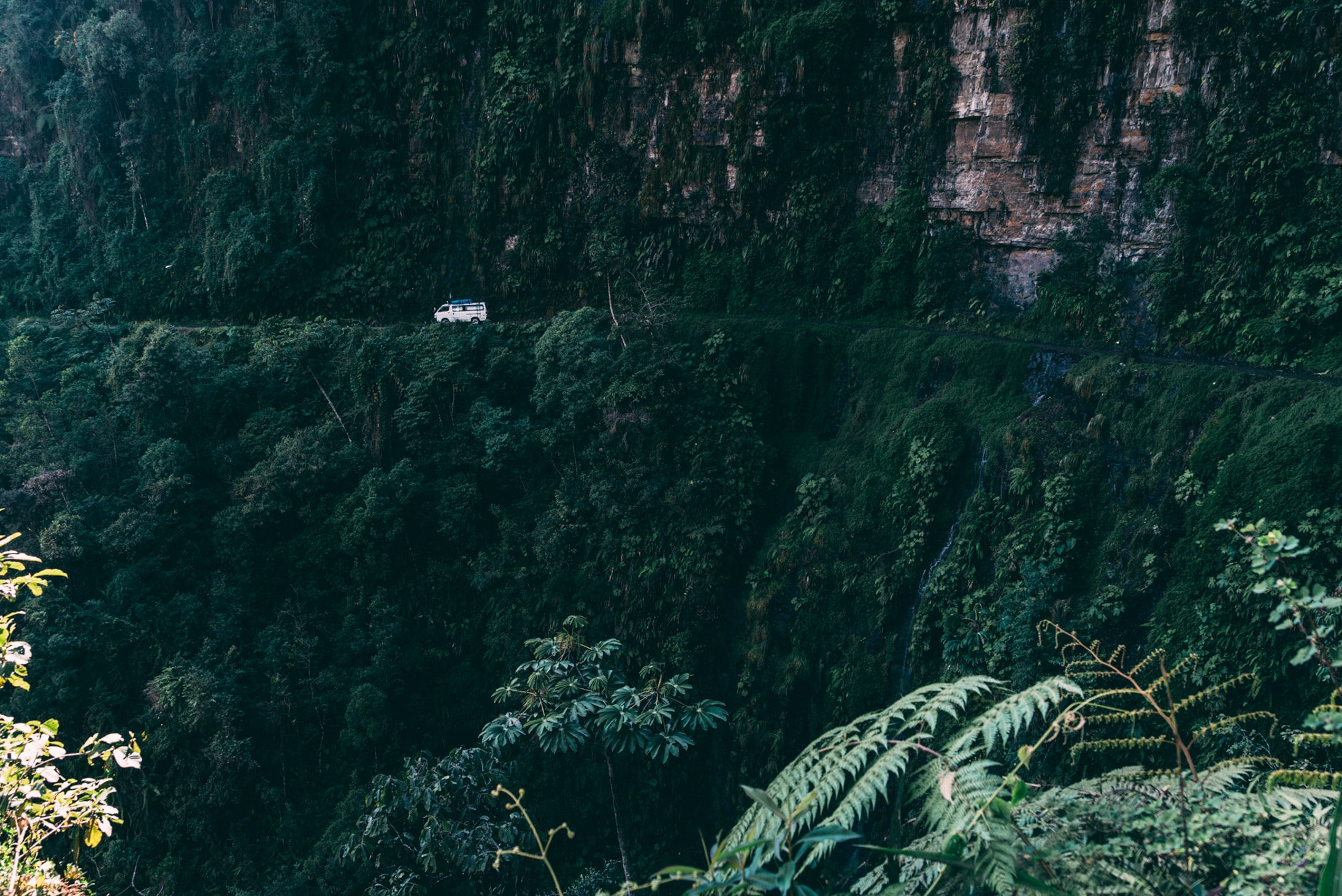 landscape photo of white vehicle near cliff and plants