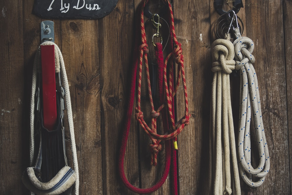 assorted ropes on hook