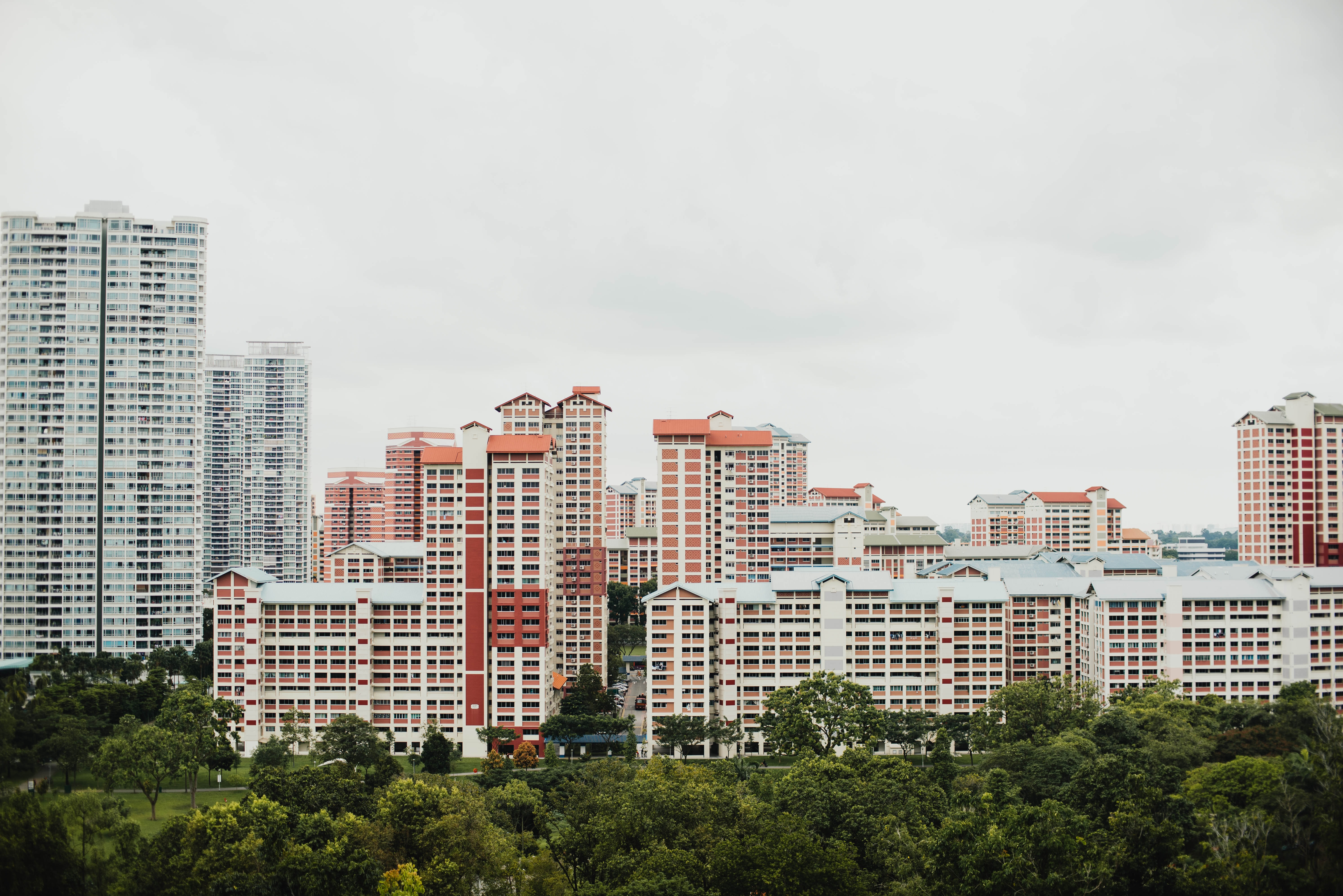 landscape photography of white high rise building beside tree