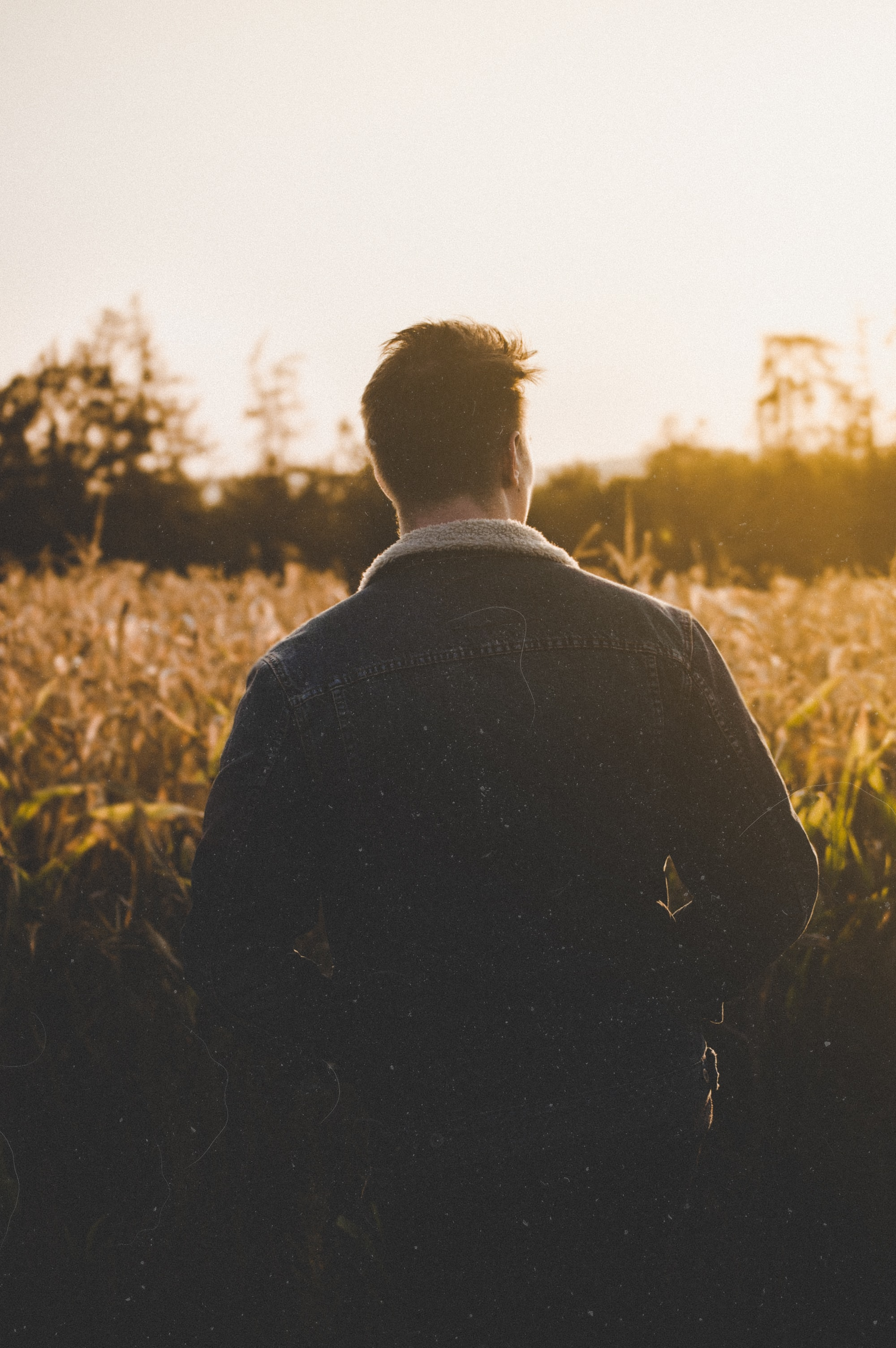 man standing near grasses