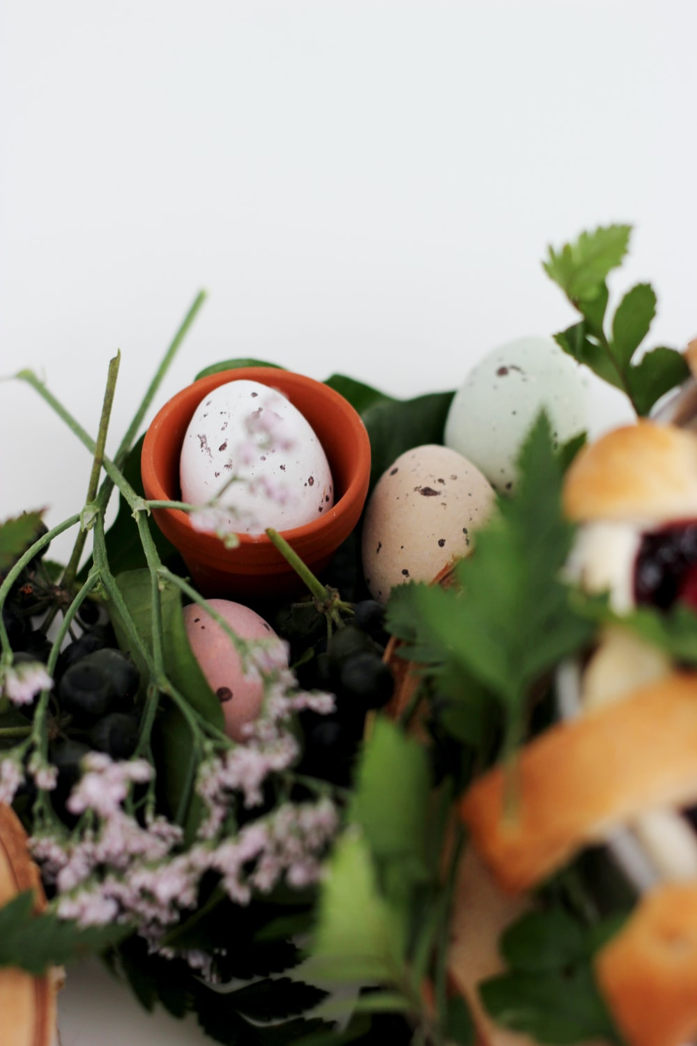 assorted-color organic eggs beside pink petaled flower
