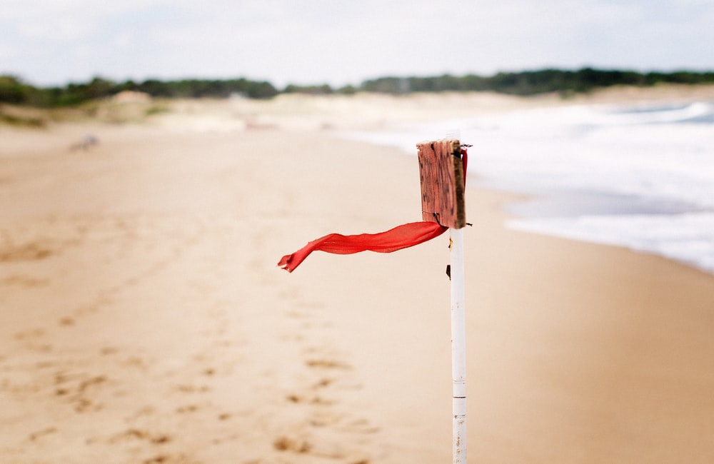 red flag on seashore at daytime