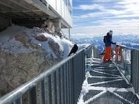 man standing on mesh bridge near mountain range