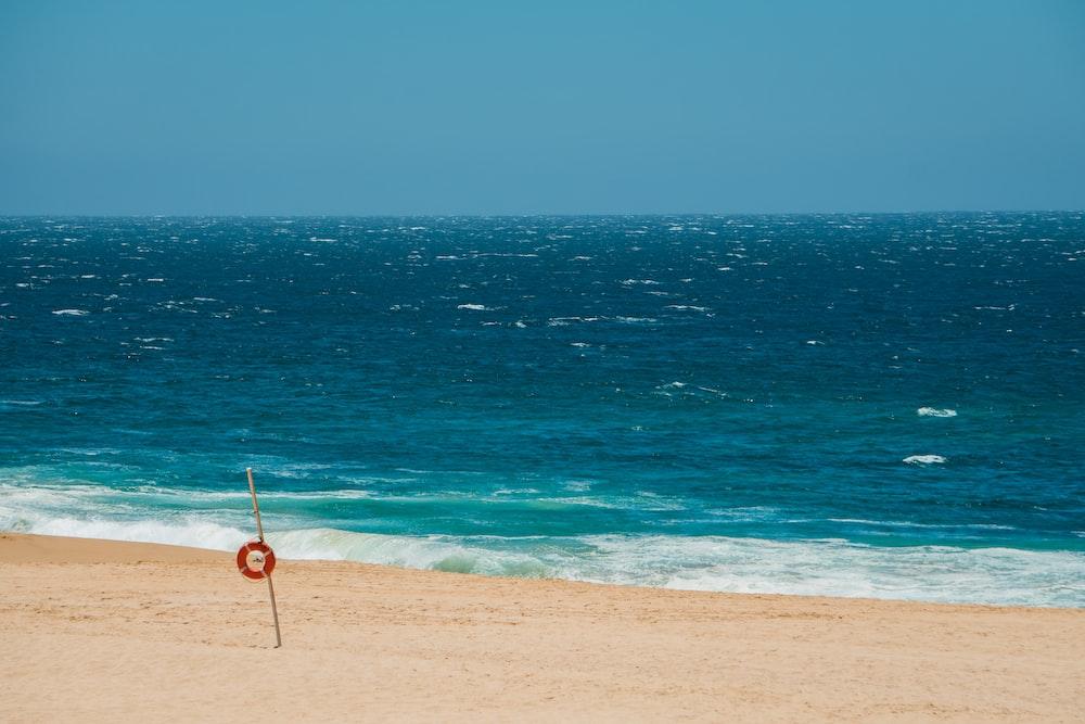 stick on sand near shoreline