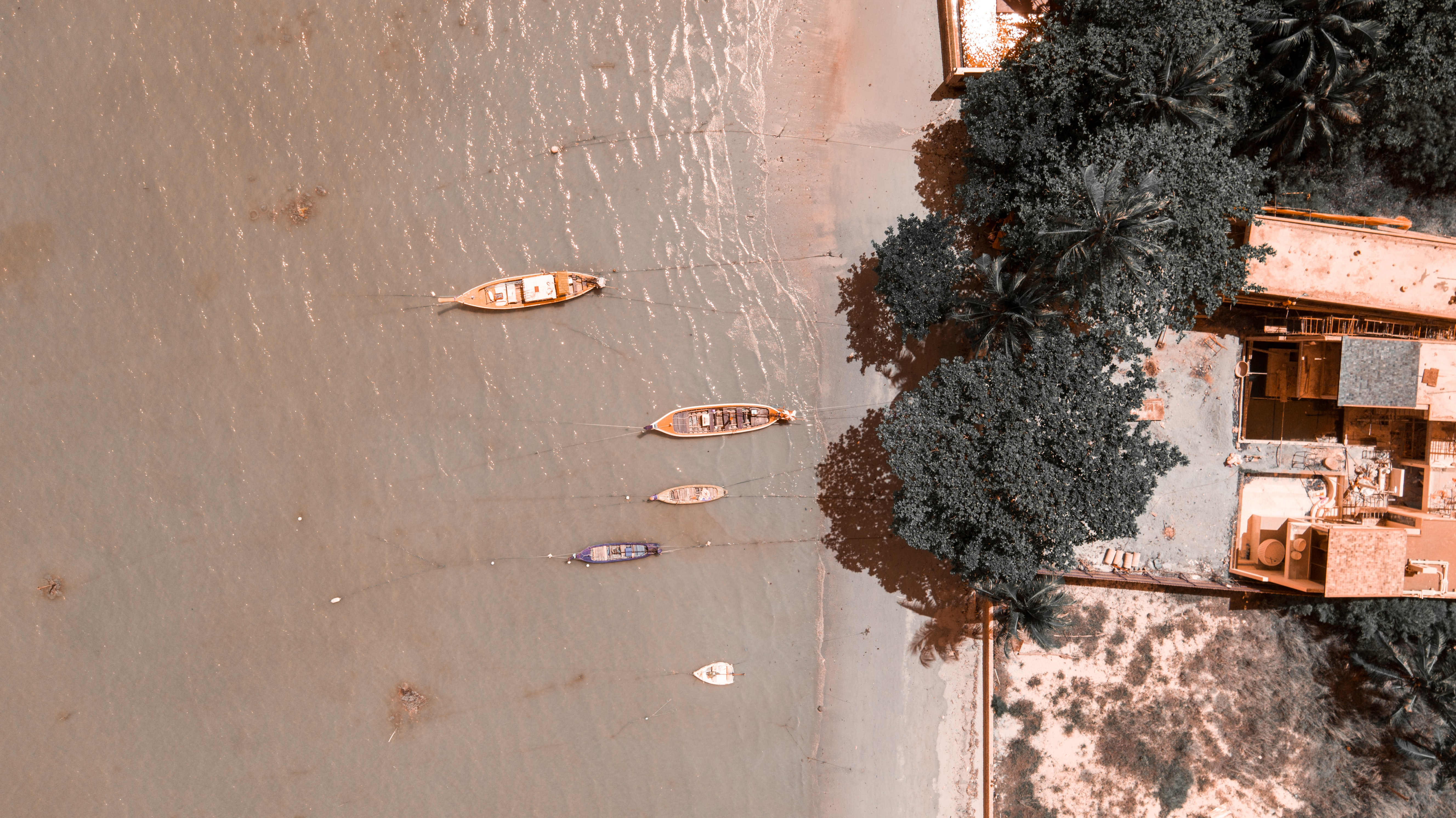 aerial photography of canoe on body of water beside trees and houses during daytime