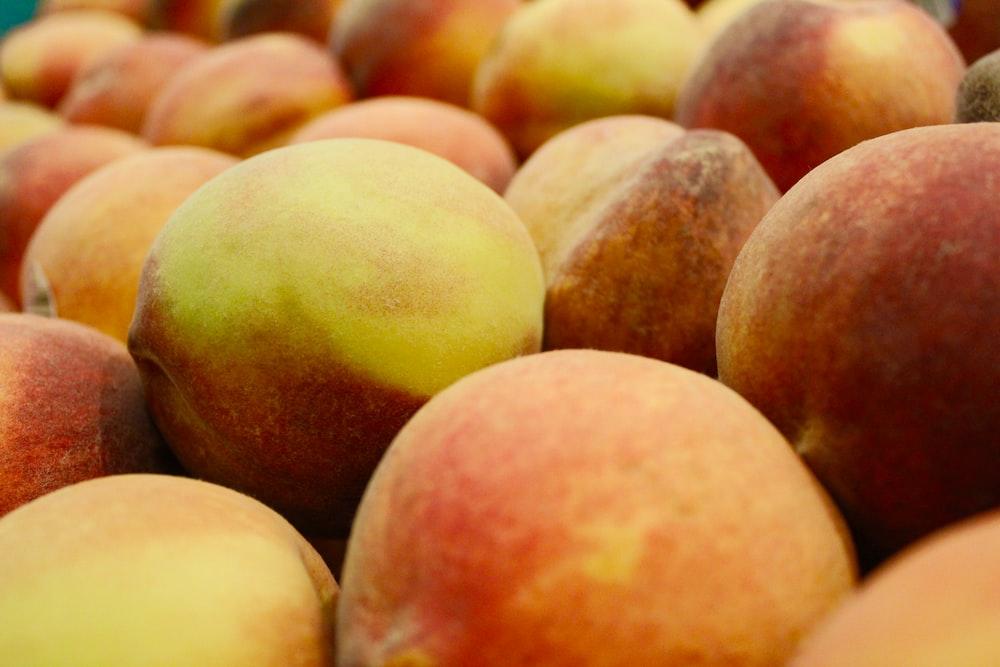 closeup photo of red apple fruit