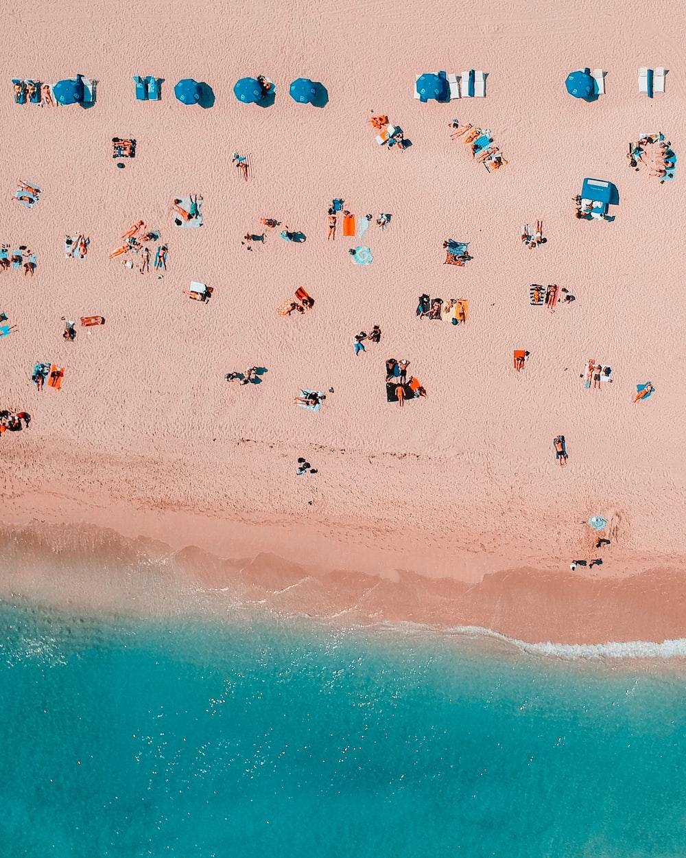bird's-eye view photography of people in seashore