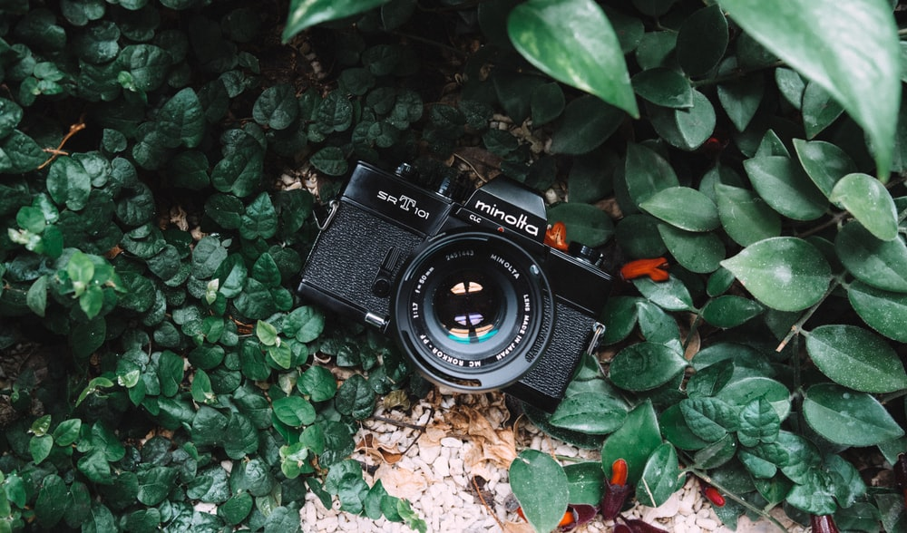 high angle photo of black Minolta bridge camera