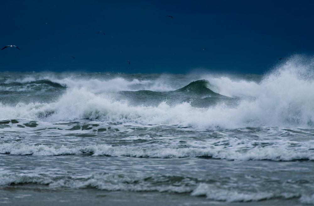 landscape photo of ocean waves