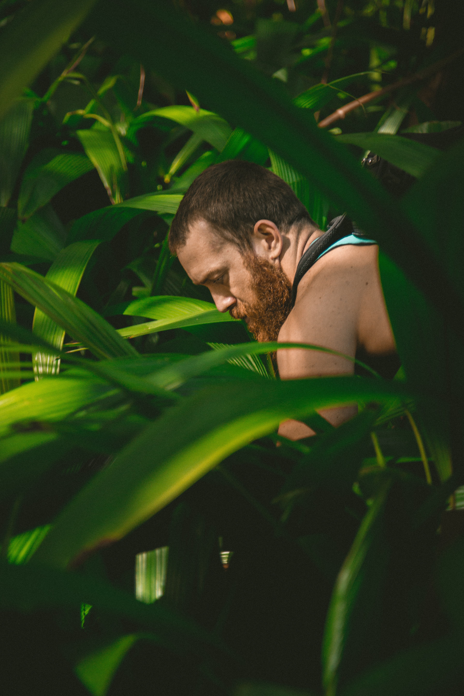 man sitting between plants