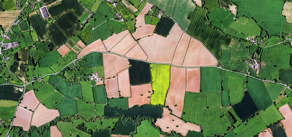 aerial view of green and black fields