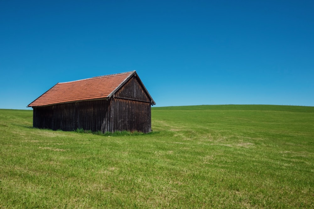 brown wooden house in middle of grass field under blue sky