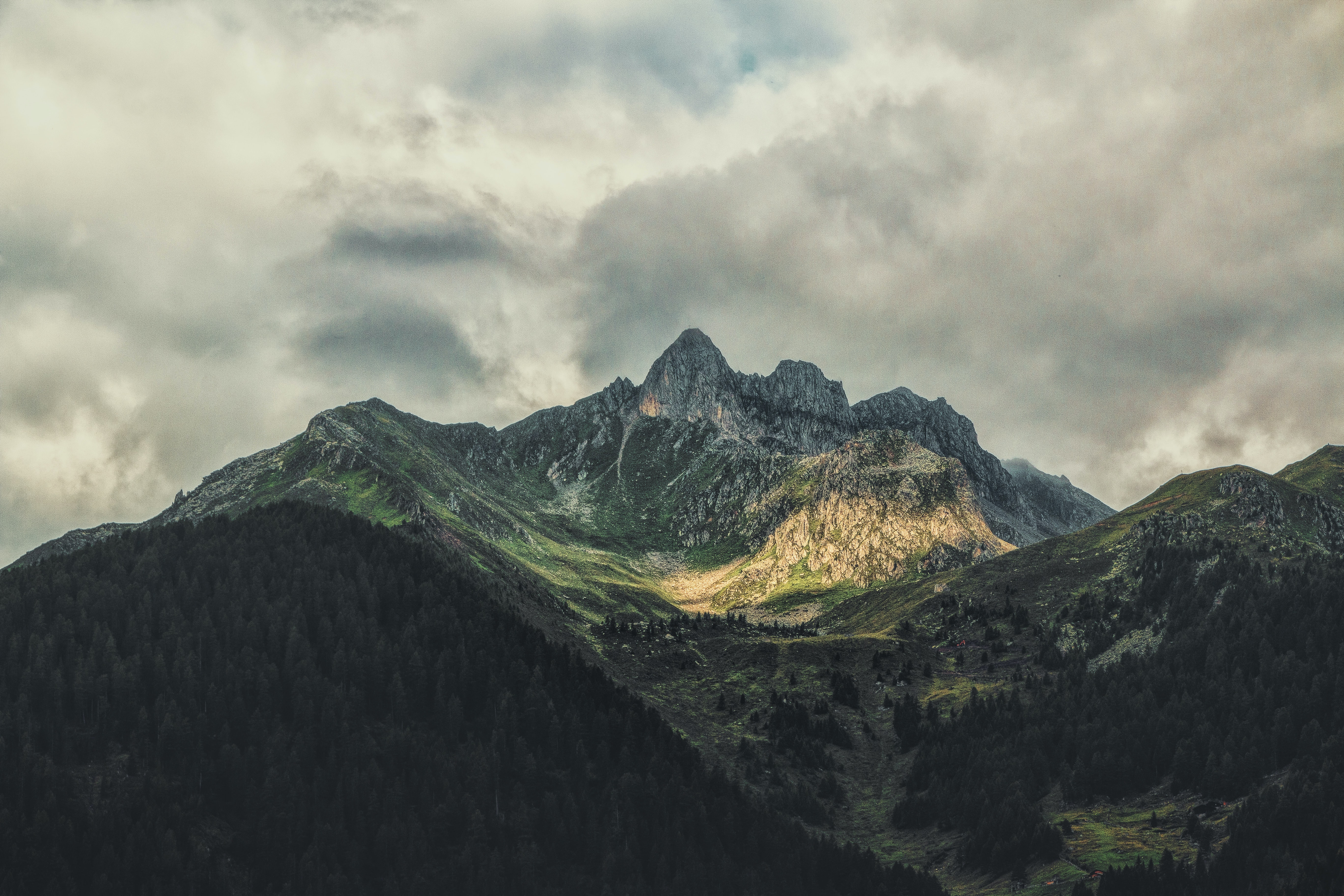 landscape photography of mountain with forest