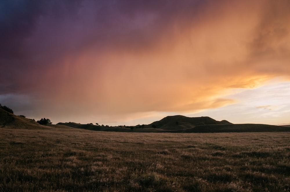 green grass near mountain under orange clouds