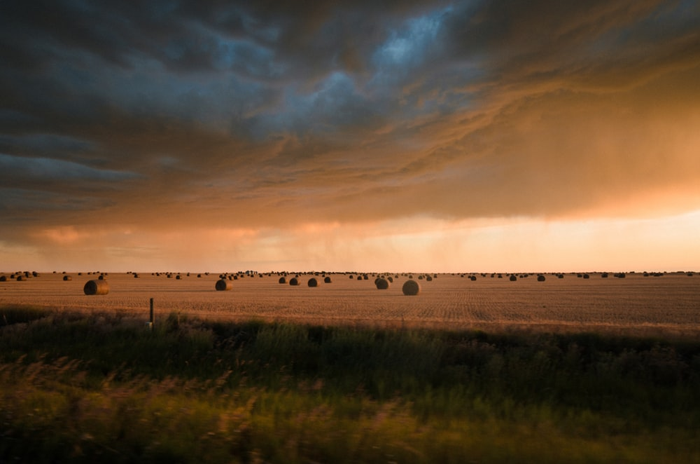 Badlands - Carson Pytell