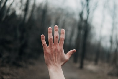 shallow focus photography of person's left hand outside hand zoom background