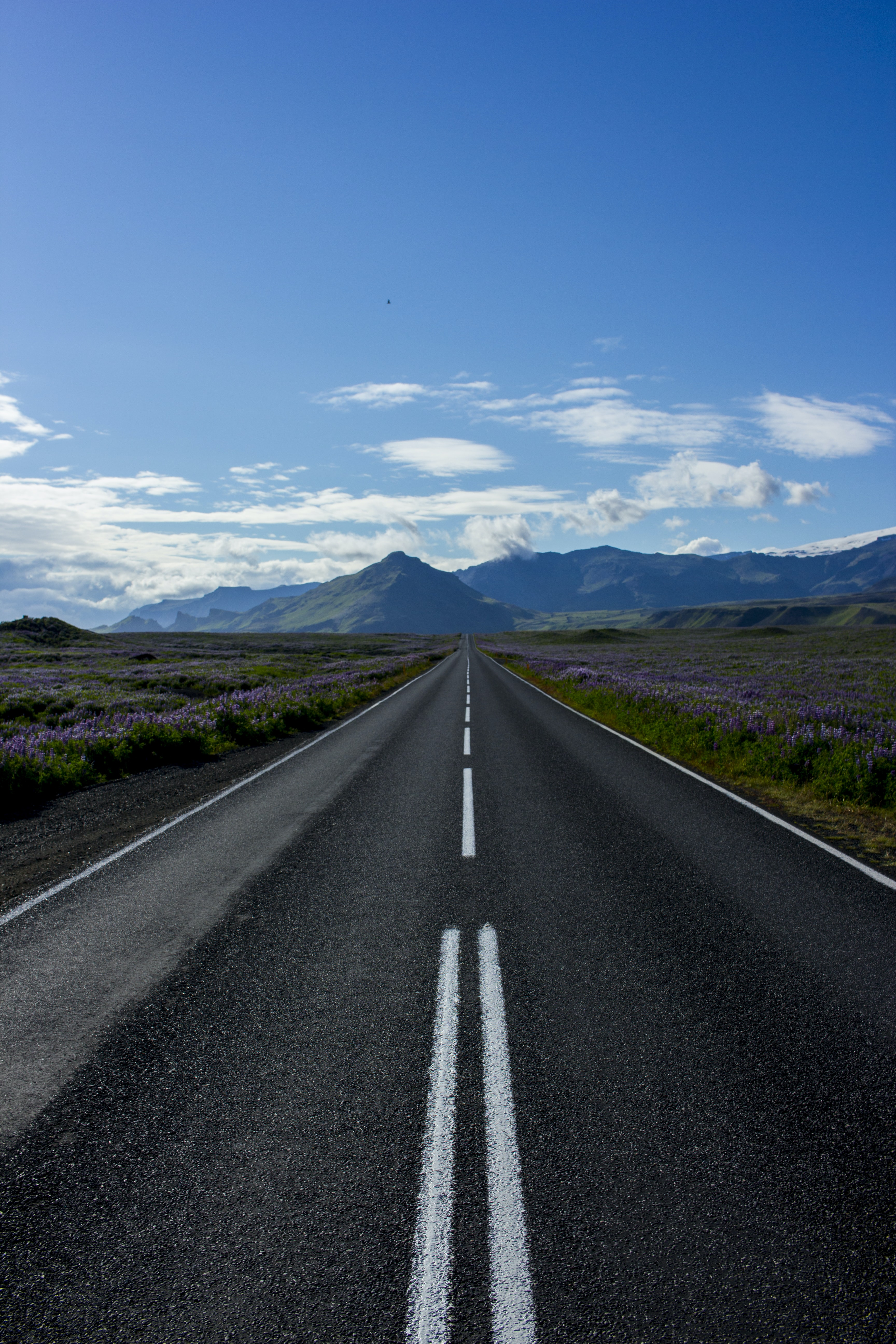 photography of road pavement