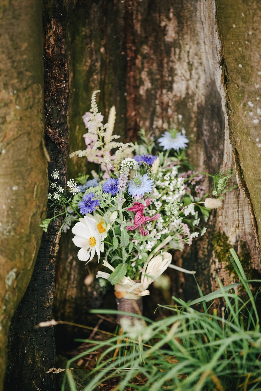 flower arrangement near brown tree trunk