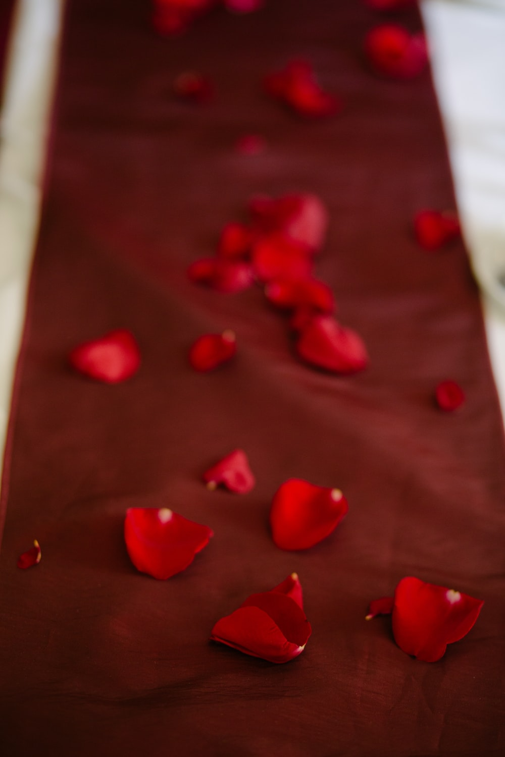 red flower petals on brown textile