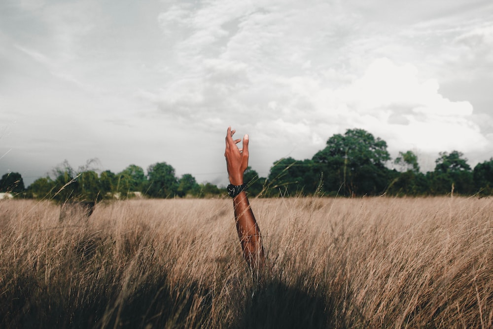 photo of person raising left hand surrounded by green grass
