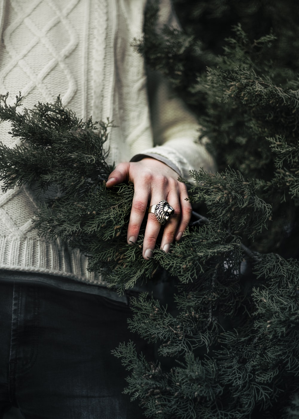 closeup photo of person standing beside green Christmas tree