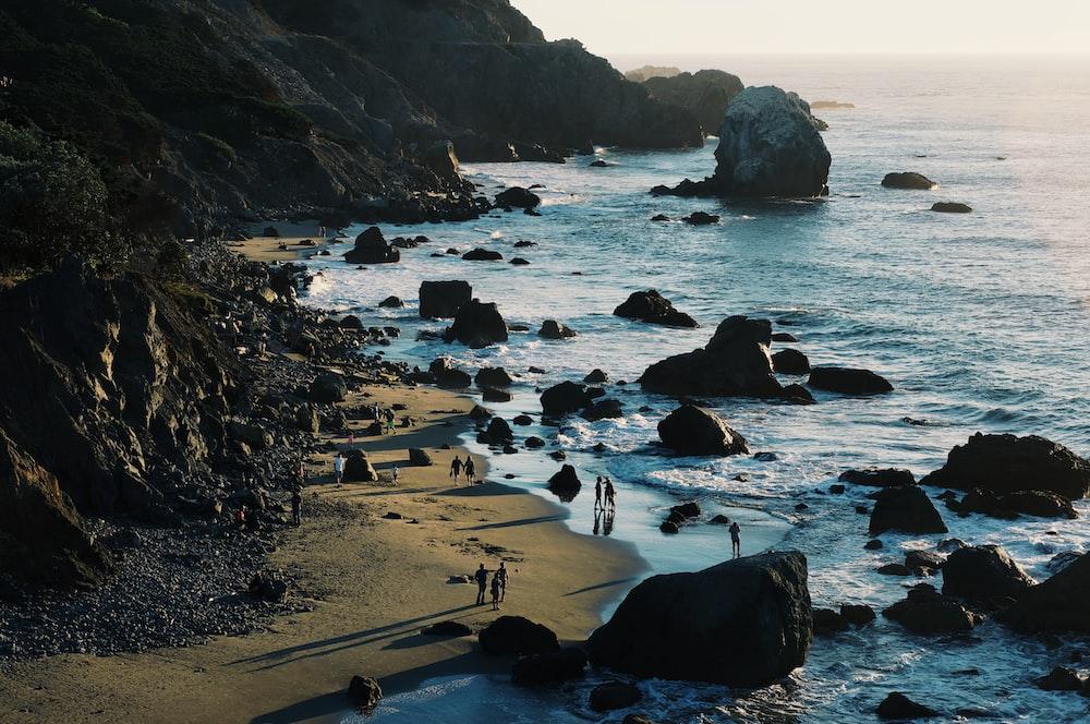 people walking beside seashore during daytime