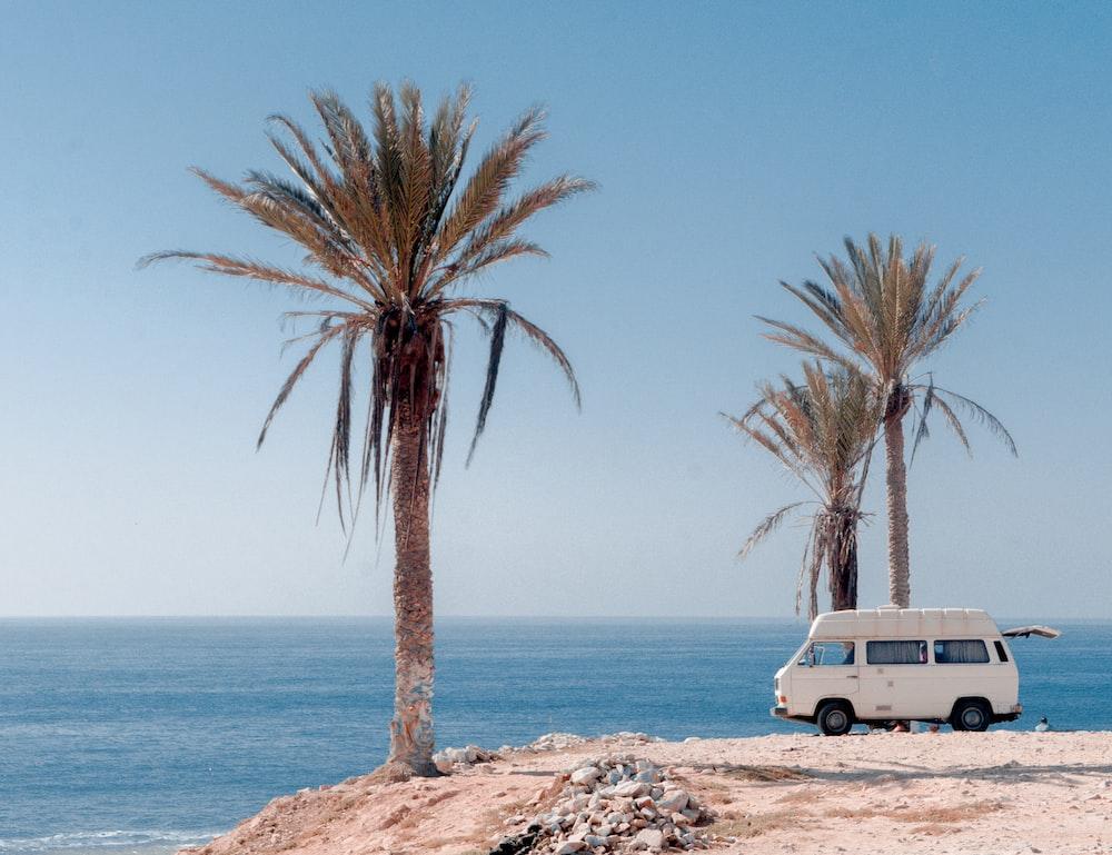white van near trees