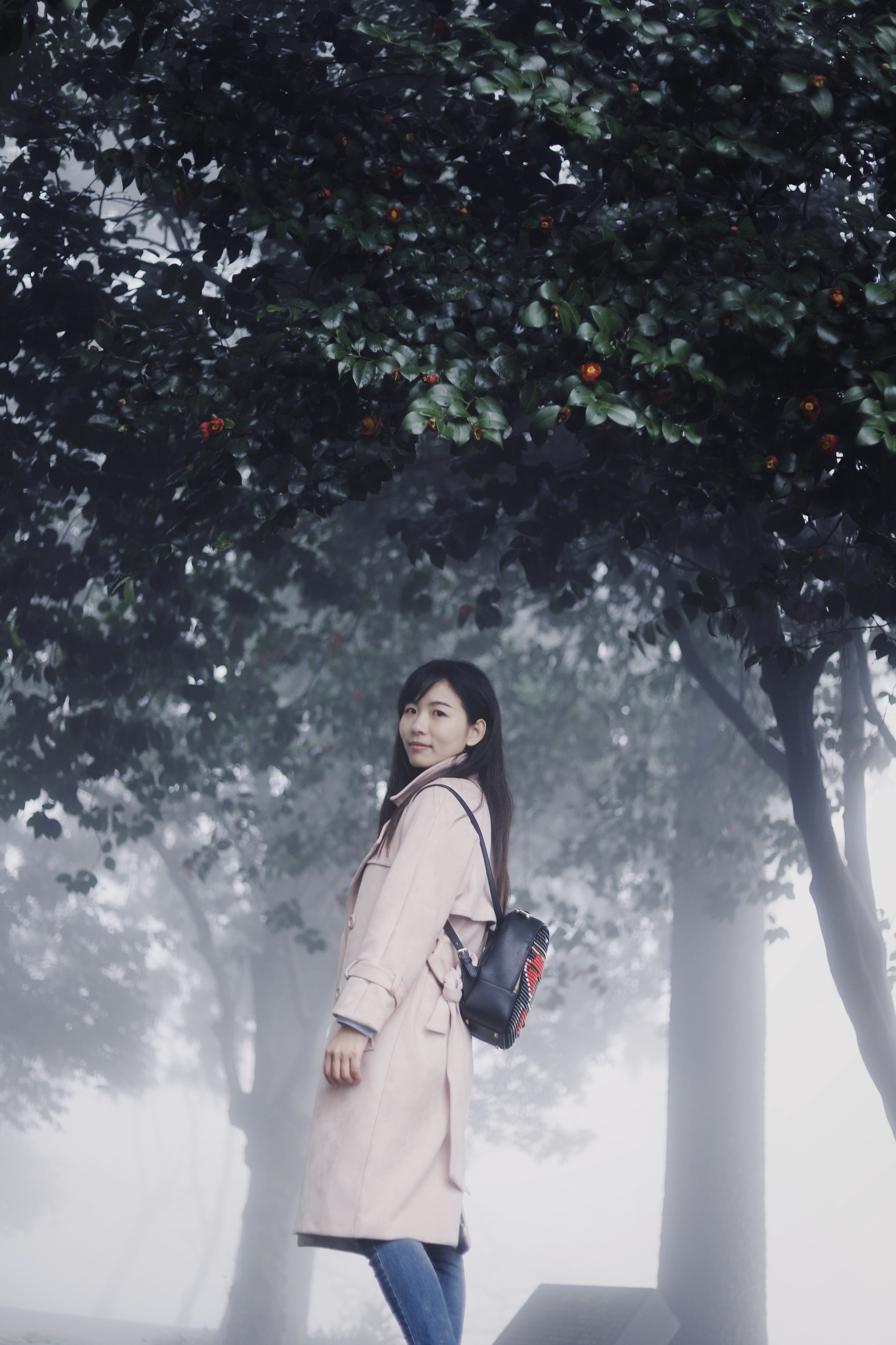 woman with black backpack near green trees covered with smoke at daytime