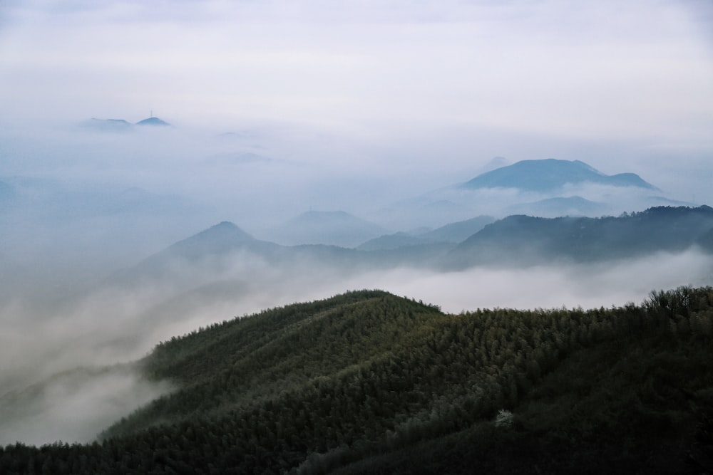 aerial view photography of green mountain under white fog