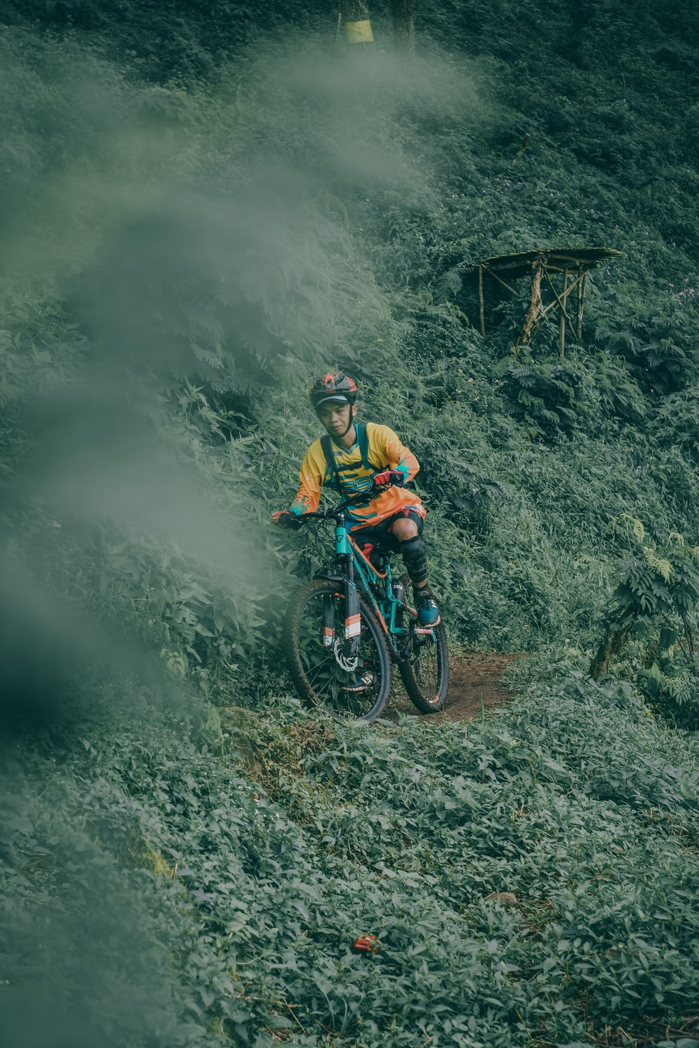 man riding teal full-suspension mountain bike on edge surrounded by green leaf plants