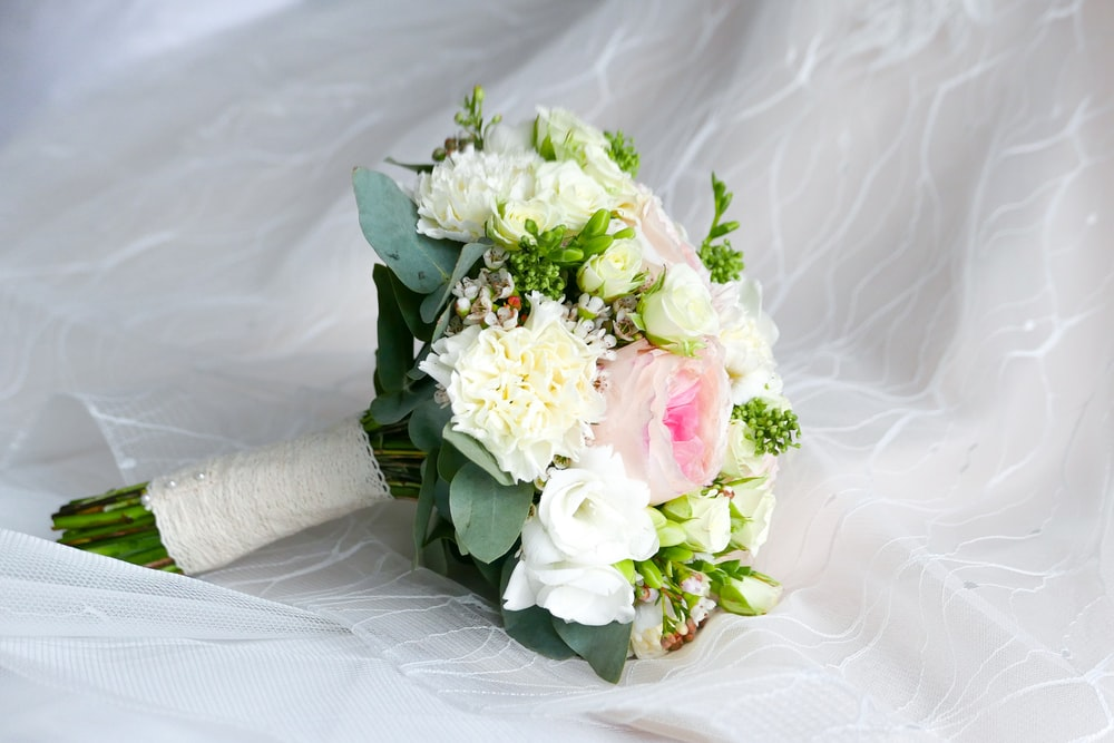100 wedding flower pictures download free images on unsplash closeup photo of white and pink petaled flower bouquet mightylinksfo