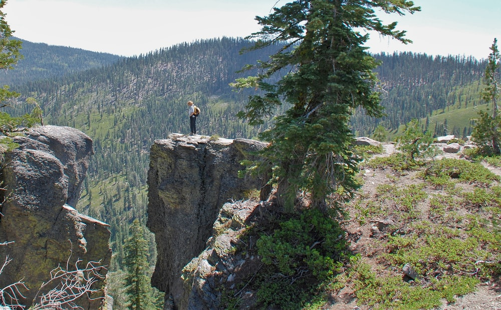 person standing on mountain cliff near green leaf trees during daytime