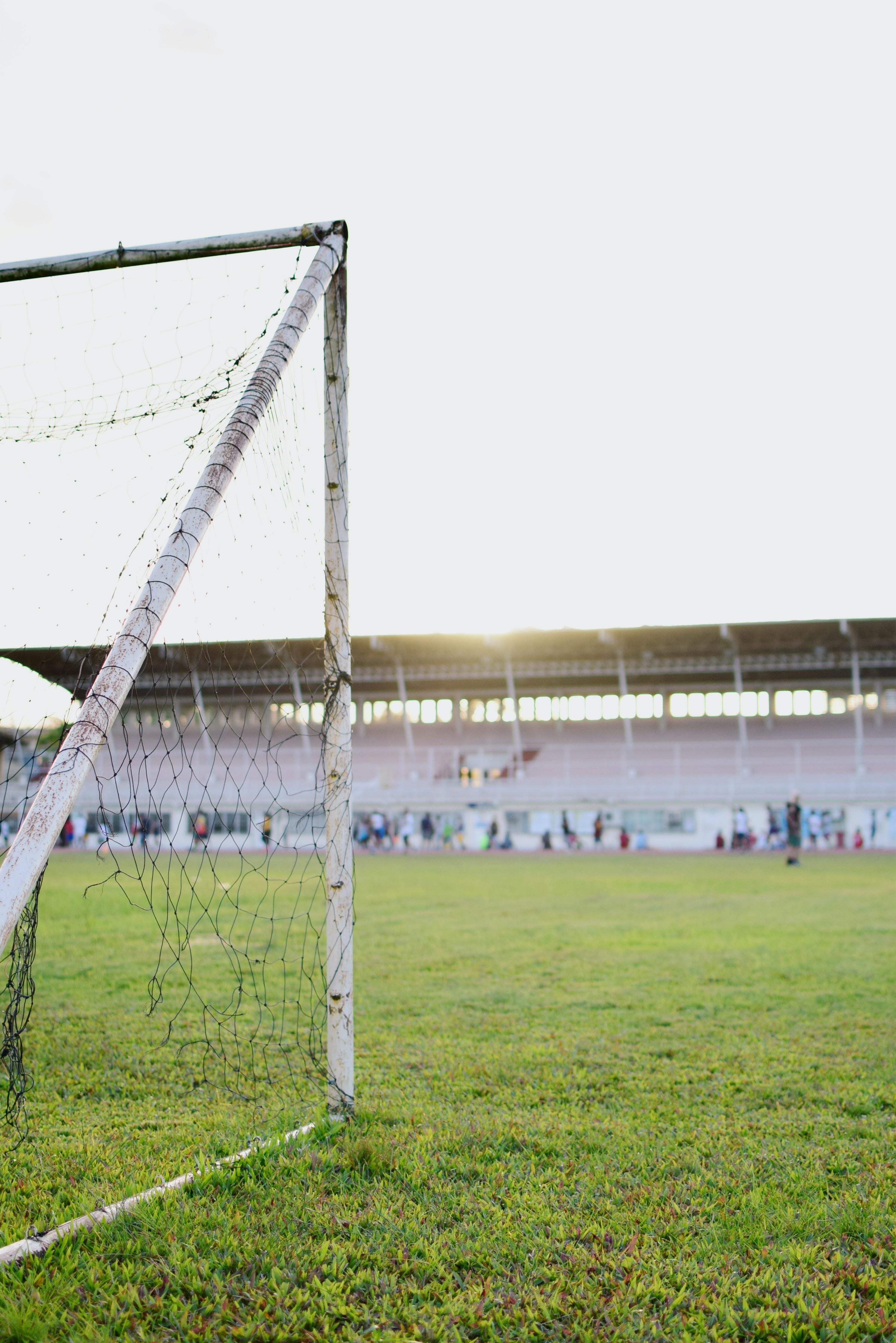 white goalie net on green grass field