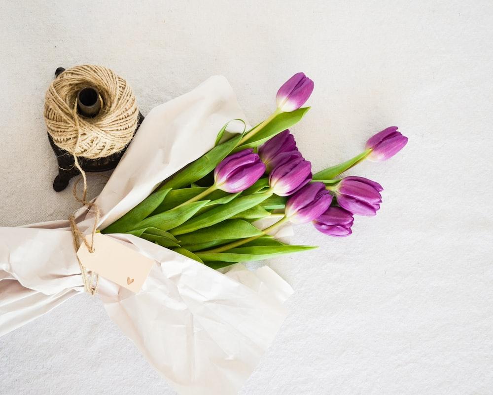 purple tulip flowers bouquet